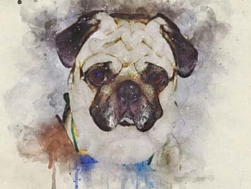 Pugs also inspired many famous artists!