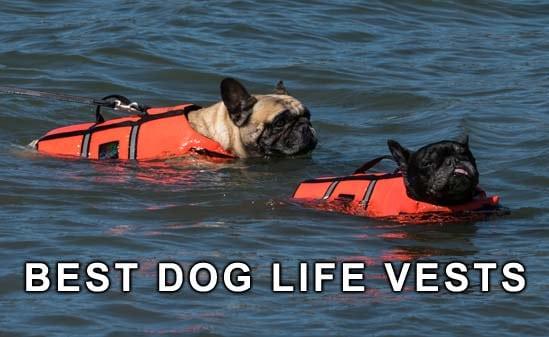 best dog life jackets