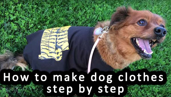 How to make dog clothes step by step