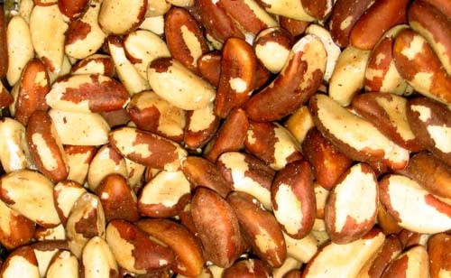Can dogs eat brazil nuts