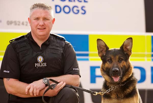 What breeds are police dogs