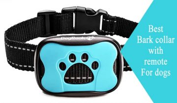Best Bark collar with remote