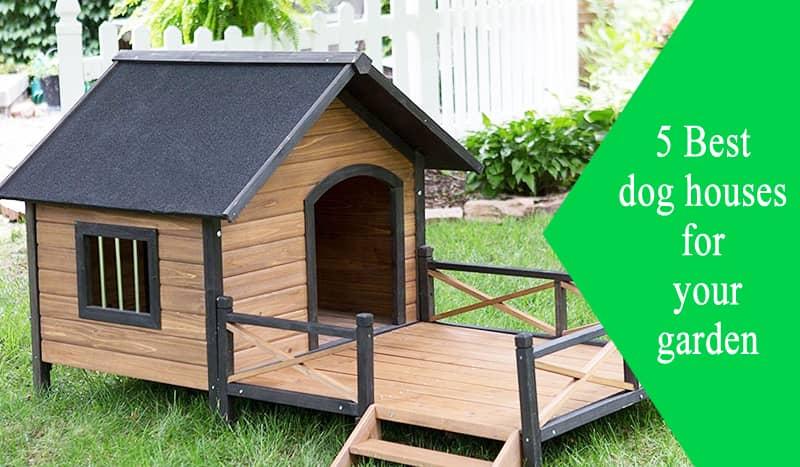 dog house for garden
