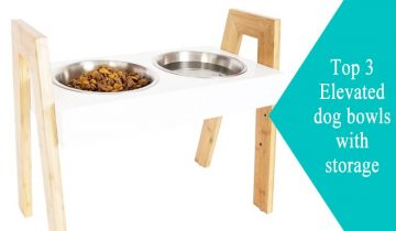 Elevated dog bowls with storage