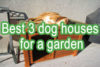 Best 5 dog houses for your garden (With Beautiful Designs) | Buyer's guide